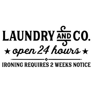 laundry and co.
