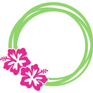 hibiscus flowers circle frame