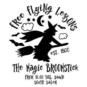 free flying lessons the magic broomstick