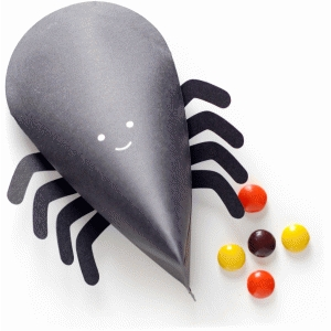 spider treat box