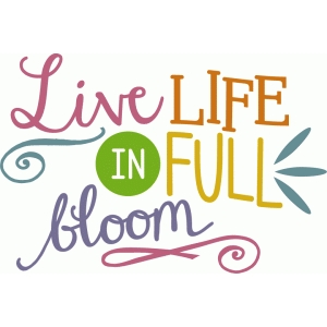 live life in full bloom phrase