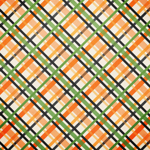 zoo plaid paper