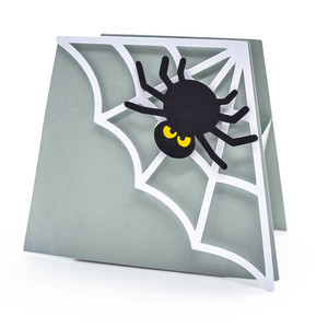 spider and web halloween box