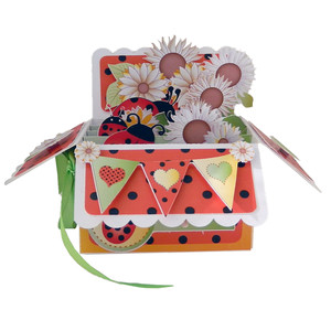 ladybug pop up card in a box