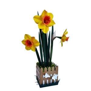 daffodil flower in spring vase