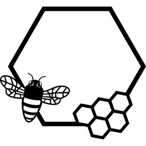 honeycomb and bee frame