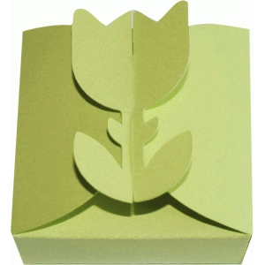 tulip closure box