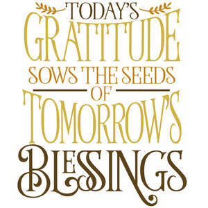 today's gratitude tomorrow's blessings
