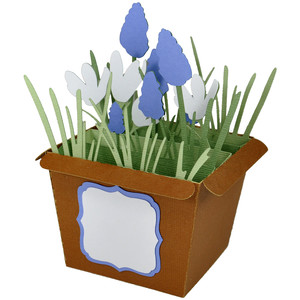 spring flower pot - card in a box