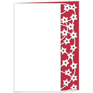 shooting stars lace edged card
