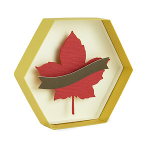 leaf hexagon box with banner