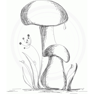 mushrooms (sketch)