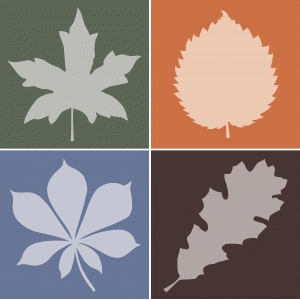fall leaf silhouettes - square