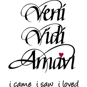 veni vidi amavi - i came, i saw, i loved