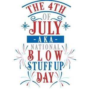 4th july blow stuff up day