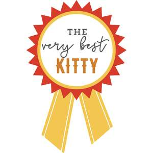 the very best kitty ribbon