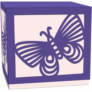 butterfly cube lidded box