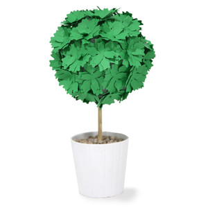 succulent short topiary