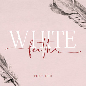 white feather font duo