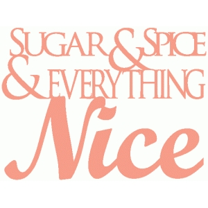 sugar & spice title / vinyl word art / subway