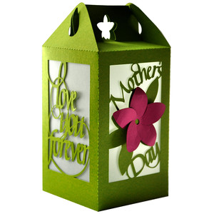 mother's day lantern