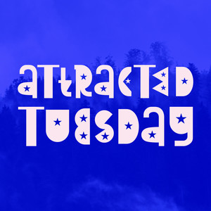attracted tuesday font