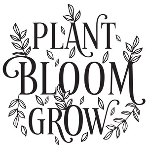 plant bloom grow