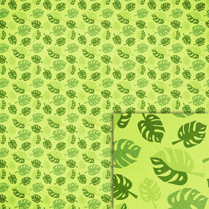green monstera leaves background paper