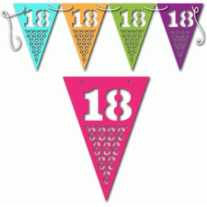 18th birthday bunting female