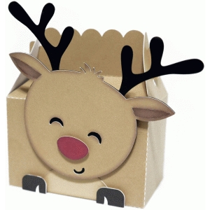 cute reindeer box