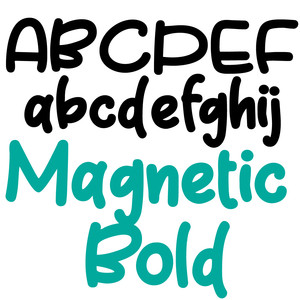 zp magnetic bold