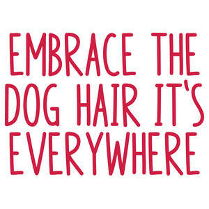 embrace the dog hair