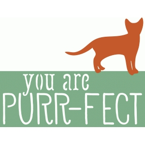 you are purr-fect