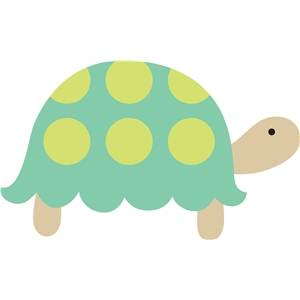 2 layer turtle