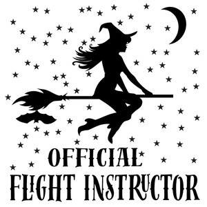 official flight instructor