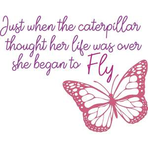 just when the caterpillar thought her life was over she began to fly