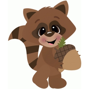 raccoon w acorn