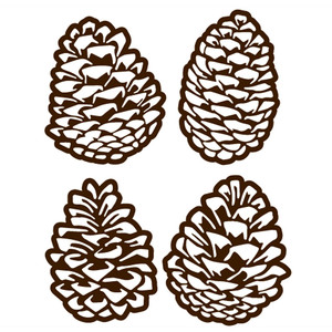 pinecones set