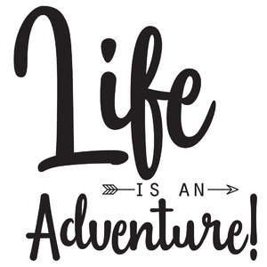 life is an adventure arrow quote