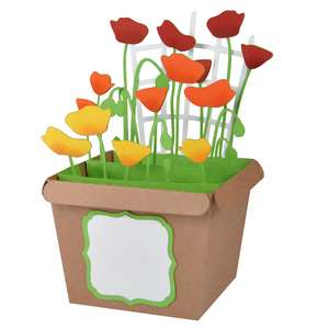 poppies pot card in a box