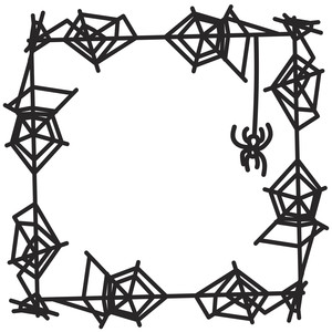 spiderweb frame with spider