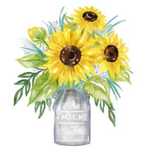 sunflowers in milk can