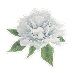 floral digital illustration blue peony