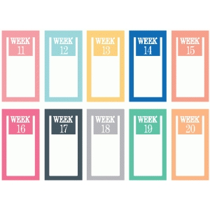 set of 10 weeks 11-20 paperclips