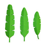 3d large tropical leaves set