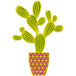 cactus in geometric pot