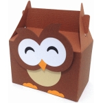 cute owl box