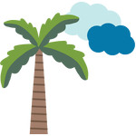 palm tree & clouds