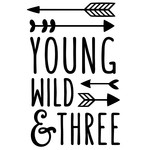 young wild & three phrase