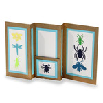 insects insert multi fold card